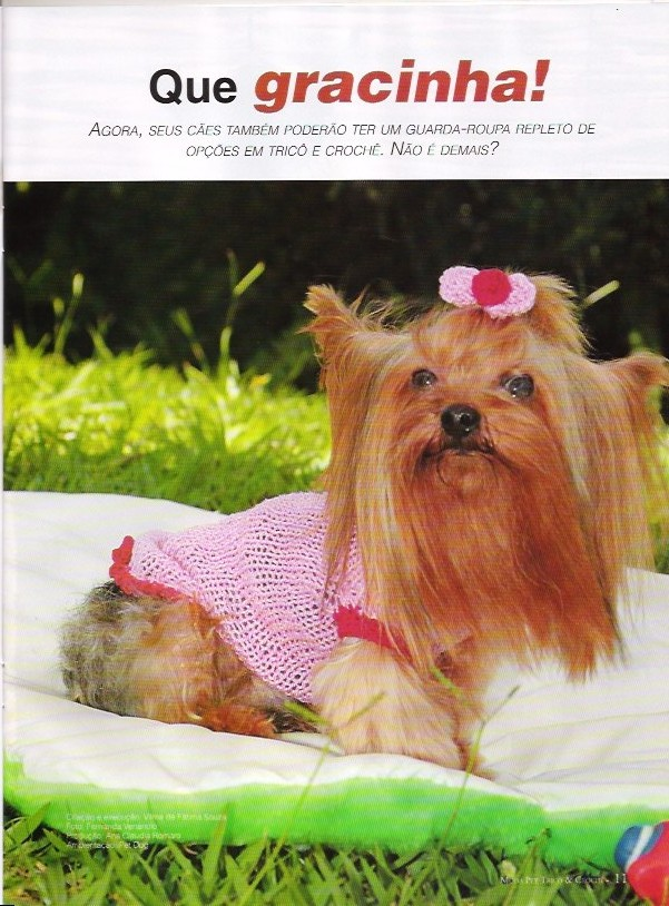 Dog Clothes Knitting Patterns 1 Knitting Free