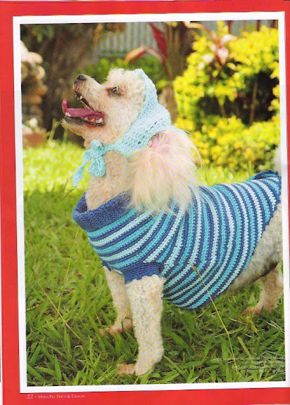 Dog Clothes Knitting And Crochet Patterns Knitting Free